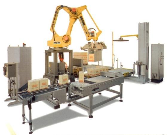 Paletizzatore Robot Antropomorfo