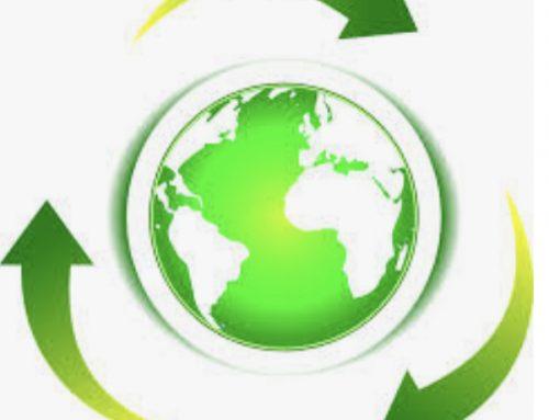 L'imballaggio sostenibile, un tema d'attualità